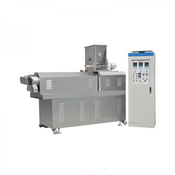 Best Price Snack Chips /Nuts /Cheetos 3D Pellets Continuous Fryer/Frying Machine #1 image